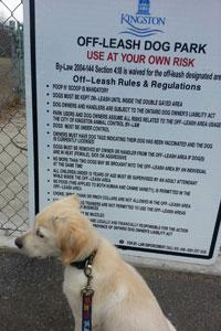 Dog Park rules signage