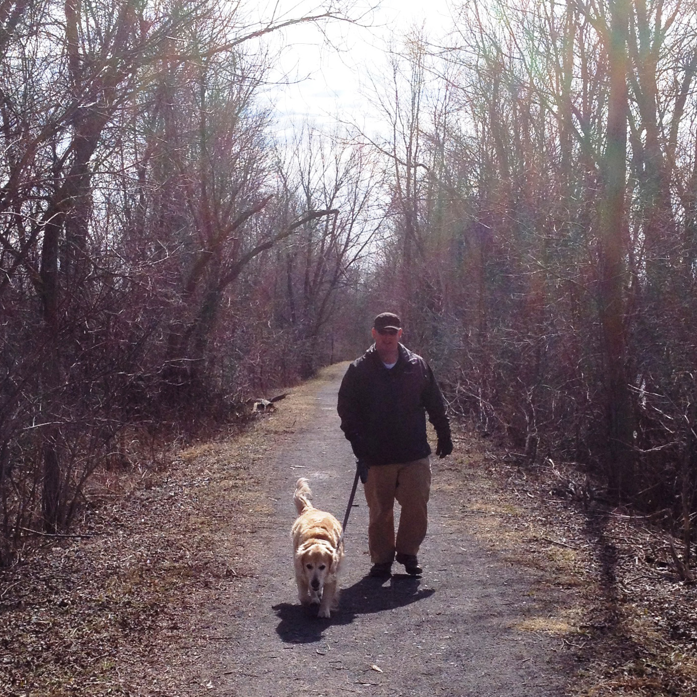 Man walking a dog on the K&P Trail