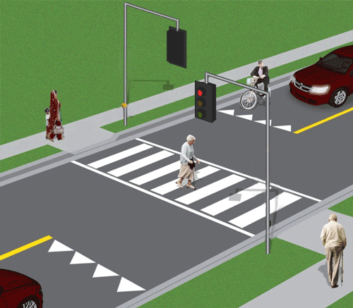 Intersection pedestrian signals