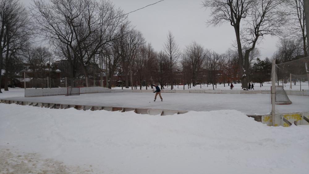 19817974_1499055447848_City Park Rink - City Park Rink