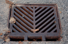 Stormwater and Drainage